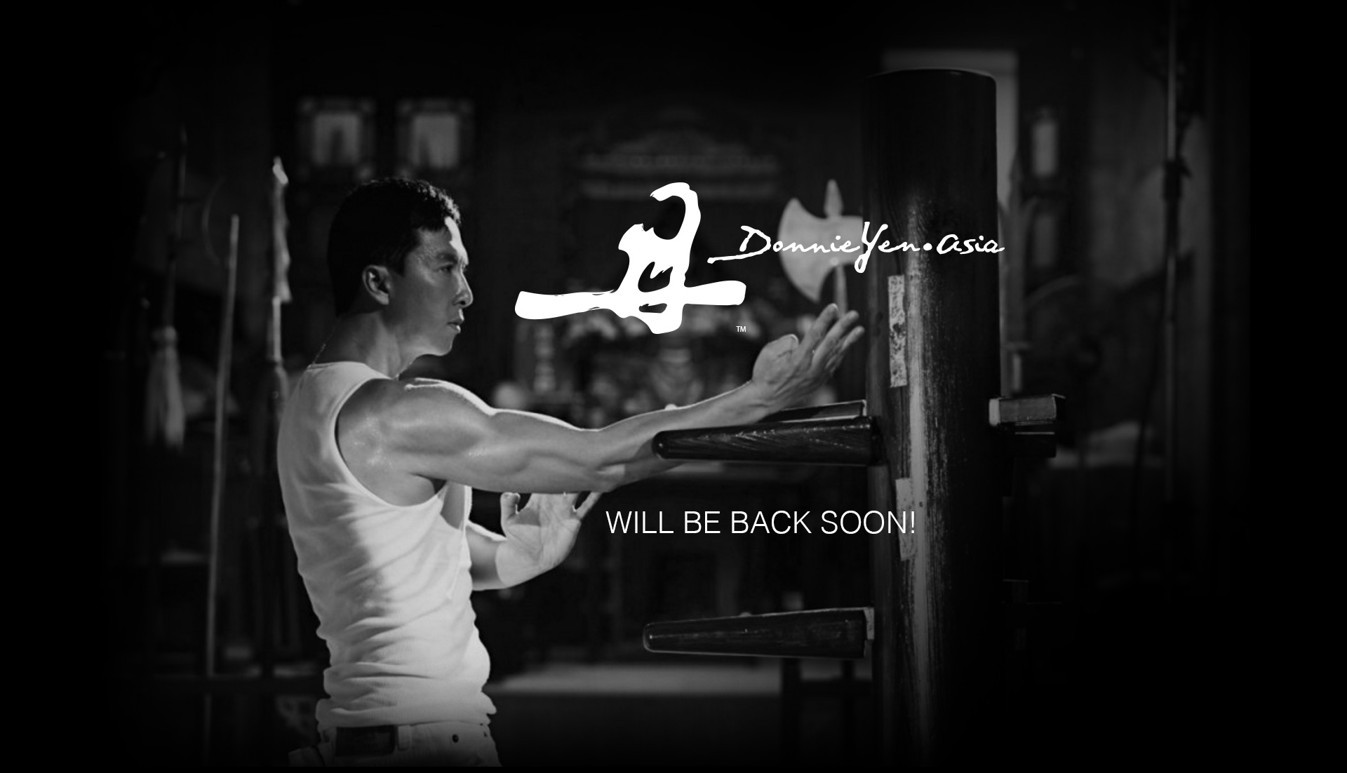DonnieYen.asia Back Soon!